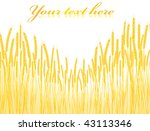 illustration of the field of... | Shutterstock . vector #43113346