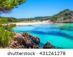 platja des bot beach in summer... | Shutterstock . vector #431261278