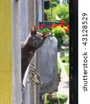 Stock photo russian blue smiling cat 43128529