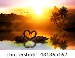 beautiful black swan in heart...   Shutterstock . vector #431365162