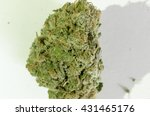 Small photo of Closeup of a strain of marijuana, The psycho active ingredient is THC.