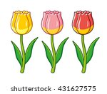 Yellow  Pink And Red Tulips...