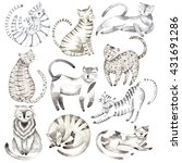 hand drawn cat illustration | Shutterstock . vector #431691286