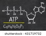 blackboard with the chemical... | Shutterstock . vector #431719732