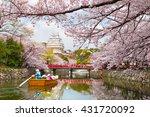 Himeji Castle Cherrry Blossoms...