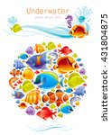 Sea Fishes Colorful Poster