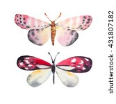 amazing watercolor butterfly....   Shutterstock . vector #431807182