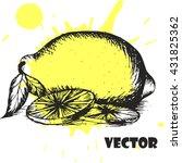 hand drawn vector illustration  ... | Shutterstock .eps vector #431825362
