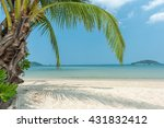 tropical beach and coconut trees   Shutterstock . vector #431832412