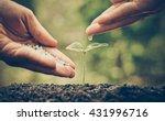 agriculture   nurturing baby... | Shutterstock . vector #431996716