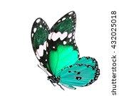Beautiful Flying Pale Green Butterfly - Fine Art prints