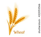 bunch of wheat  barley or rye... | Shutterstock .eps vector #432053566