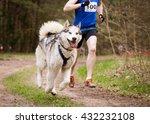 Sled Dog Sport Races Canicross...