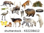 assortment of many kind of... | Shutterstock . vector #432238612
