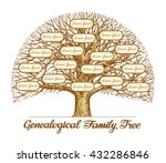 vintage genealogical family... | Shutterstock .eps vector #432286846