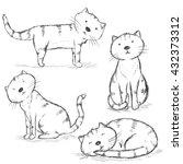 Vector Set Of Sketch Cat...