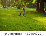 Stock photo the little curly fellow trains the doggy on a lawn in park boy is holding a frisbee his pet 432464722