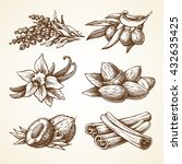 set with nature elements herbal ... | Shutterstock .eps vector #432635425