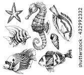 Fish  Sea Horse  Marine Life...