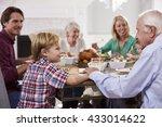 extended family group sit...   Shutterstock . vector #433014622