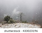 Heavy Snow In The Mountain...