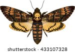 dead head moth isolated on... | Shutterstock .eps vector #433107328