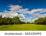 Park With Green Meadow And...