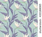 strelitzia seamless pattern | Shutterstock .eps vector #433188085
