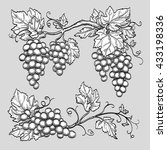 grape branches. hand drawn... | Shutterstock .eps vector #433198336