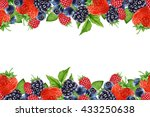 hand drawn berries on white...   Shutterstock . vector #433250638