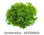parsley herb closeup isolated