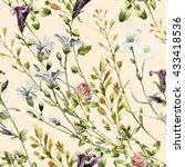 watercolor wild flowers...   Shutterstock . vector #433418536