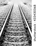 Railway Track In Black And...