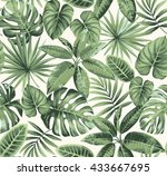 tropical seamless pattern with... | Shutterstock .eps vector #433667695
