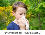 Small photo of Hay fever - allergic rhinitis in children