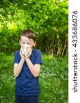Small photo of Hay fever - allergic rhinitis in children