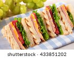 summer picnic club sandwich ham ... | Shutterstock . vector #433851202