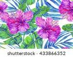 watercolor tropical flowers ... | Shutterstock . vector #433866352