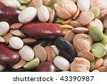 Macro Seeds Of Leguminous Plants