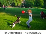 Stock photo the boy plays on a lawn with dog the boy has raised a hand with frisbee up his beautiful brawny 434000602