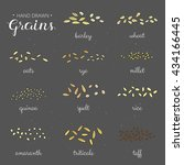 hand drawn cereal grains with... | Shutterstock .eps vector #434166445