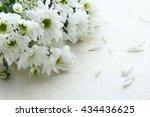 bouquet of chrysanthemums | Shutterstock . vector #434436625