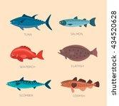 Stock vector set of sea fish scomber codfish flatfish sea perch salmon tuna fish vector set in flat style 434520628