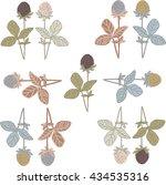 clover flowers   Shutterstock .eps vector #434535316