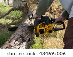Man Cuts A Fallen Tree In The...