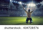 he is the champion | Shutterstock . vector #434728576