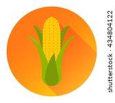 corn flat design icon isolated...   Shutterstock .eps vector #434804122