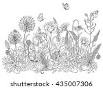 hand drawn line illustration... | Shutterstock .eps vector #435007306