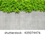 green leaf with grey concrete... | Shutterstock . vector #435074476