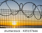 Small photo of Abatis on the fence on the background of sunset.